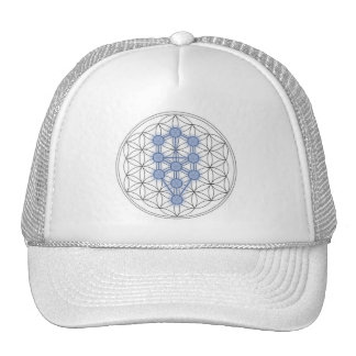 Tree of Life Hat