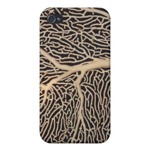 Tree of Life Covers For iPhone 4