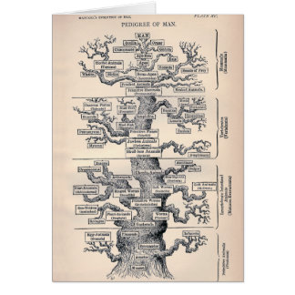 Tree Of Life / Pedigree Of Man Card
