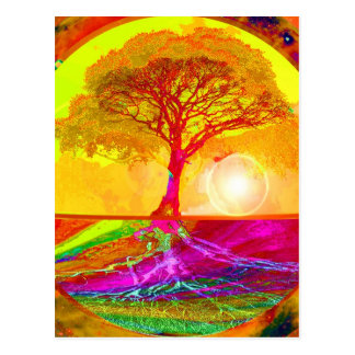 Tree of Life Sunrise Postcard