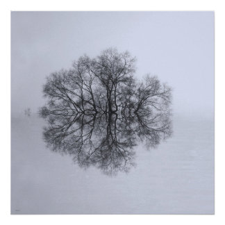 Tree of Reflection Art Poster Print