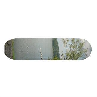 Tree On Lake Rock Shore Skate Deck