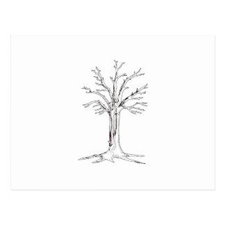Tree Outline Postcard