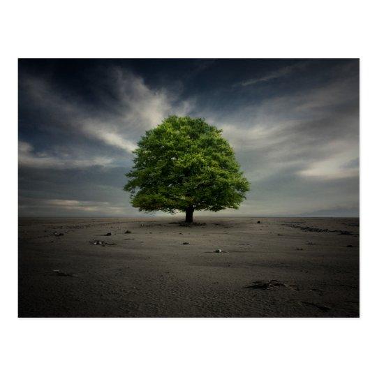 Tree Postcard