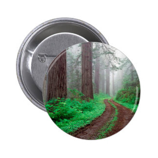 Tree Redwood California 6 Cm Round Badge