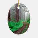 Tree Redwood California Christmas Ornaments