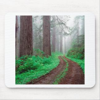 Tree Redwood California Mousepad