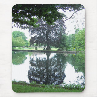 Tree reflected in the water mouse mat
