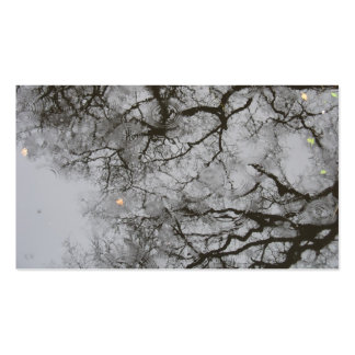 Tree Reflections & Rain in Water Photo Card Pack Of Standard Business Cards