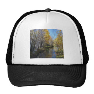 Tree River Aspen Trucker Hat