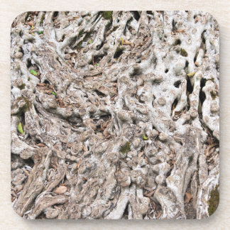 Tree root composition coaster