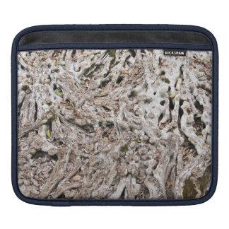 Tree root composition iPad sleeve