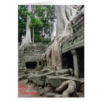 Tree roots at Ta Phrom  Cards