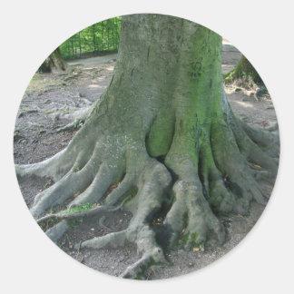Tree Roots Round Sticker