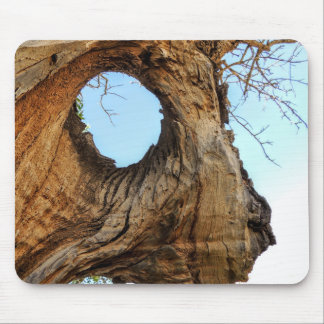 TREE sculpture Mouse Pad
