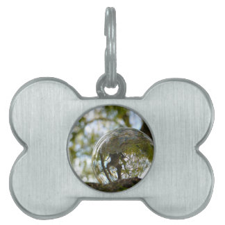 Tree seen through a crystal ball pet tags