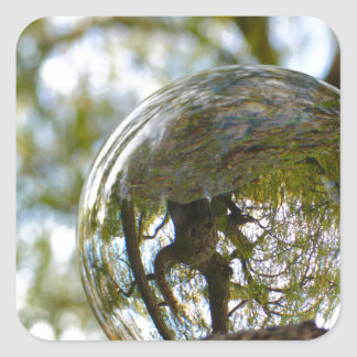 Tree seen through a crystal ball square sticker