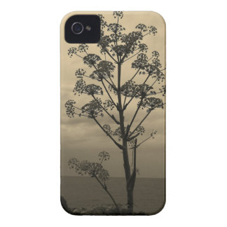 Tree Silhouette Brown Sky iPhone 4 Case-Mate Case
