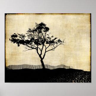 Tree Silhouette Photo Art Poster