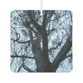 Tree Silhouette Photograph Air Freshener