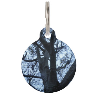 Tree Silhouette Photograph Custom Dog Tag