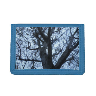 Tree Silhouette Photograph Wallet