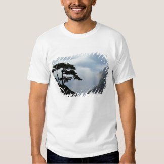 Tree silhouetted at sunrise, Yellow Mountain, Tshirts