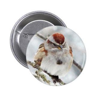 Tree Sparrow in Winter 6 Cm Round Badge