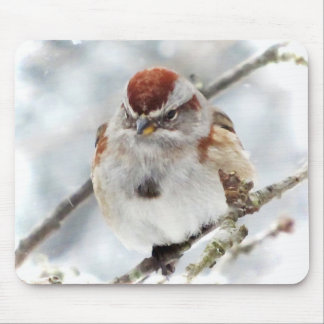 Tree Sparrow in Winter Mouse Pad