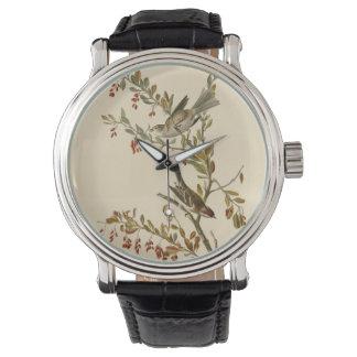 Tree Sparrow Watch