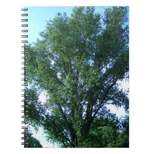 Tree spiral photo note book