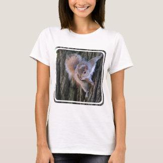 Tree Squirrel  Ladies T-Shirt