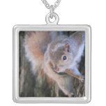 Tree Squirrel  Necklace