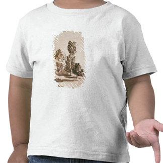 Tree Study pen ink on paper T-shirt