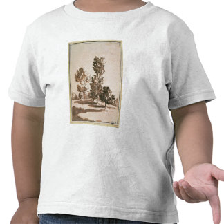 Tree Study (pen & ink on paper) Shirts
