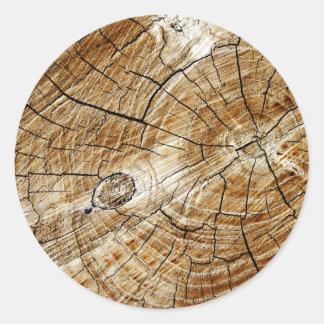Tree Stump Round Sticker