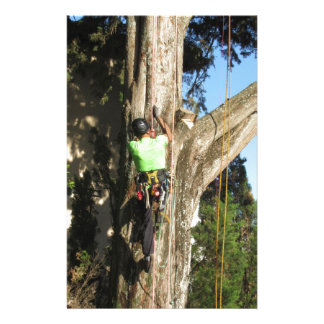 Tree surgeon lumberjack hanging from a big tree stationery paper