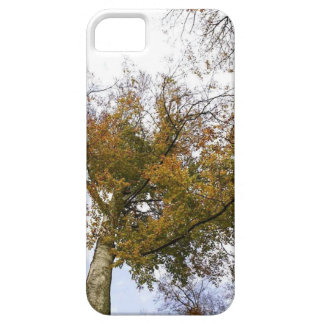 TREE TOP IN AUTUMN BARELY THERE iPhone 5 CASE