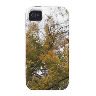 TREE TOP IN AUTUMN Case-Mate iPhone 4 COVER