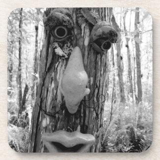 Tree troll on a Big Cypress tree Drink Coaster