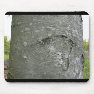 Tree Trunk Mouse Mats