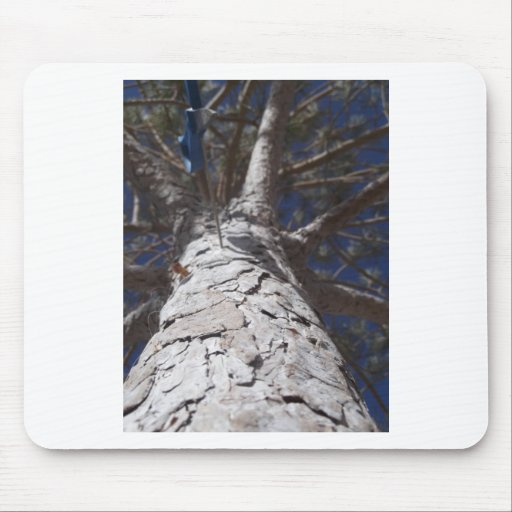 Tree Trunk Mouse Pads