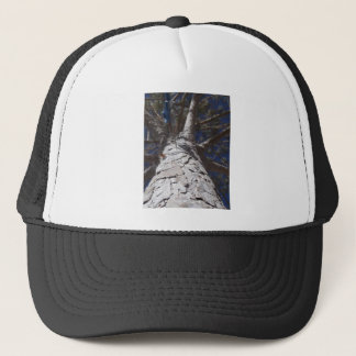 Tree trunk trucker hat