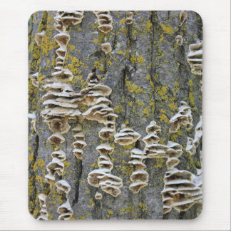 Tree Trunk with Lichen Mouse Pad