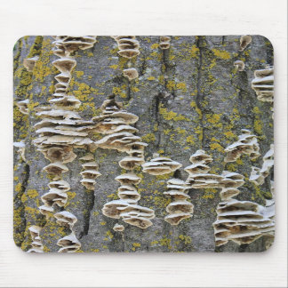 Tree Trunk with Lichen Mousepad