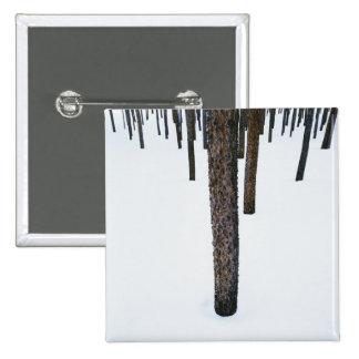 Tree Trunks in Snow 15 Cm Square Badge