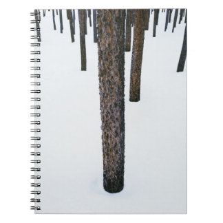 Tree Trunks in Snow Spiral Notebook