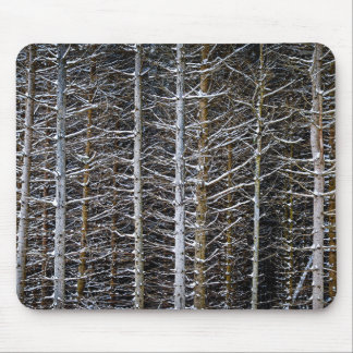 Tree trunks in winter mouse pad