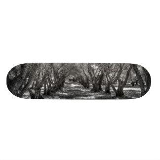 Tree Tunnel Custom Skate Board