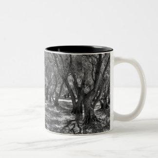 Tree Tunnel Mug